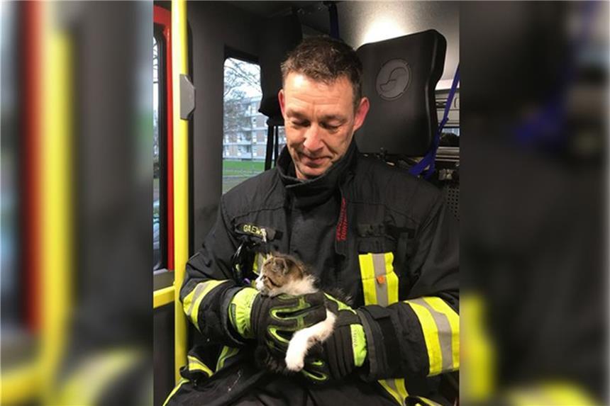 Tierischer Einsatz für die Feuerwehr: Kätzchen aus Motorraum gerettet