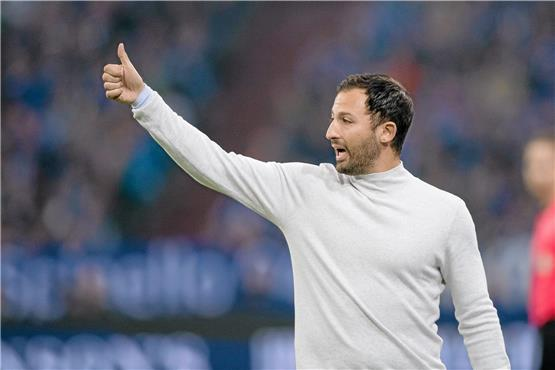 Der Bessermacher: Schalke-Trainer Domenico Tedesco