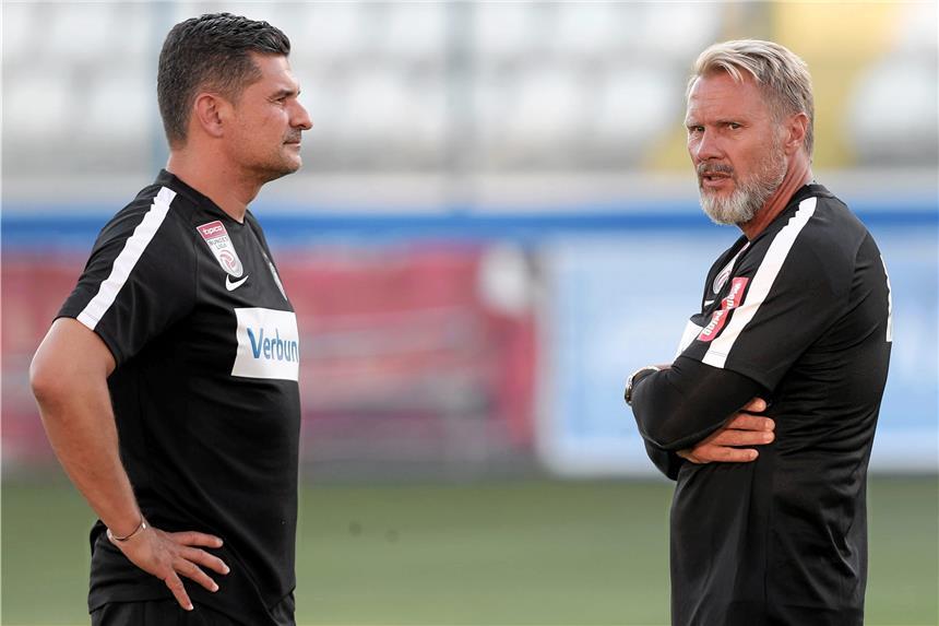 Team erweitert: Stöger bedient sich bei der Austria
