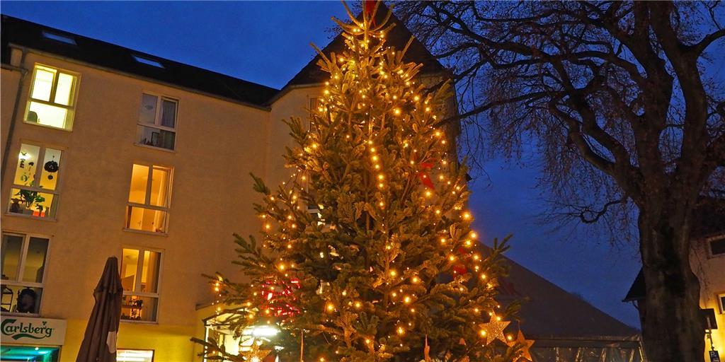 Weihnachtsbaum Zerstört