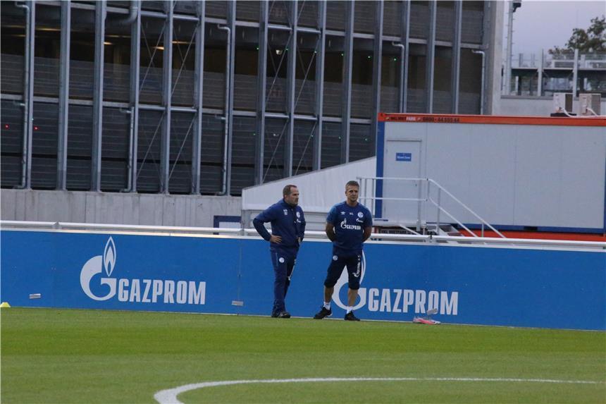 Schalke öffentliches Training